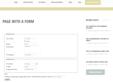 Umbraco Form on TXT.png